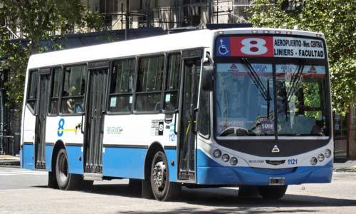 colectivo-8